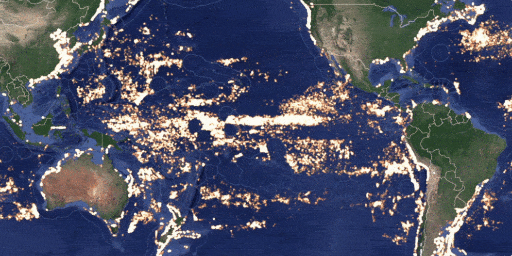 Oceans of data: tracking illegal fishing over 1.4 billion square miles