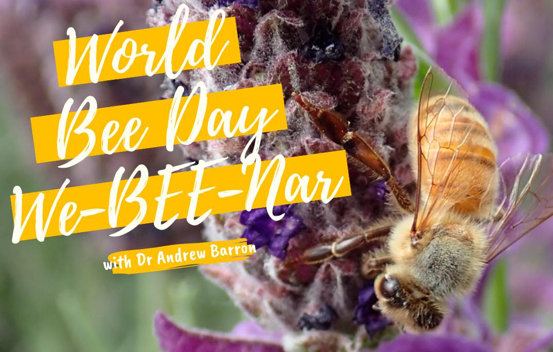 Webinar: World Bee Day