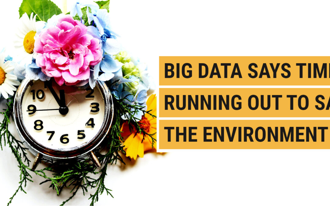 Big Data says time's running out to save the Environment