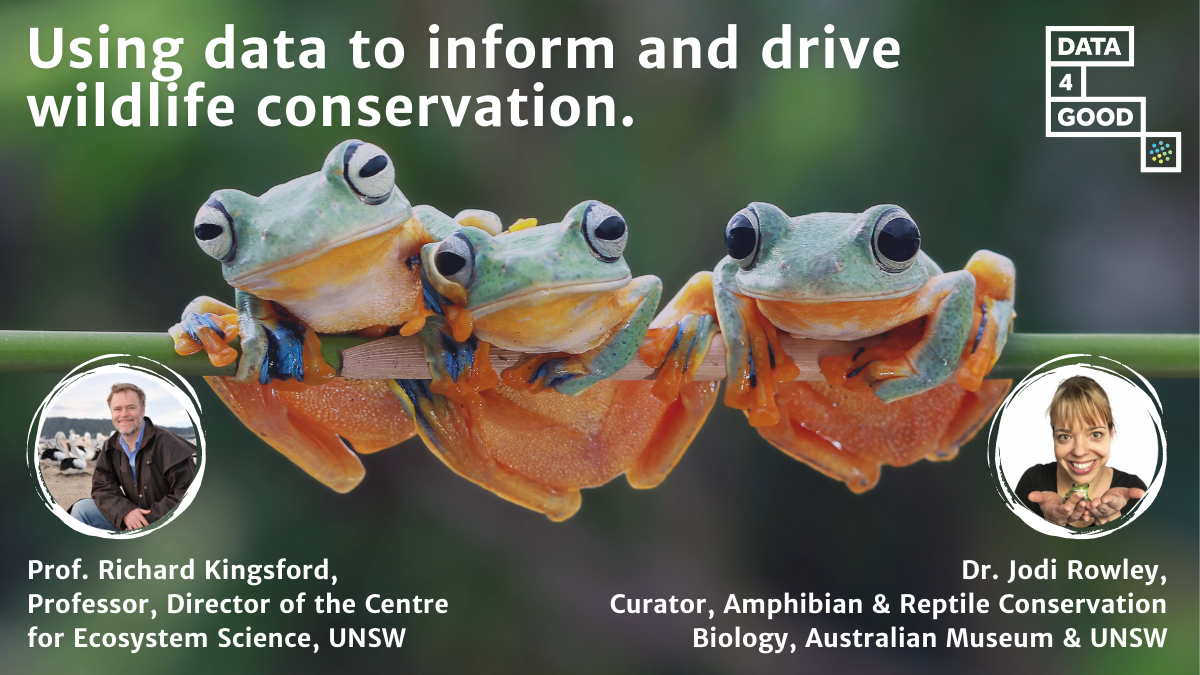 Webinar: World Wildlife Day