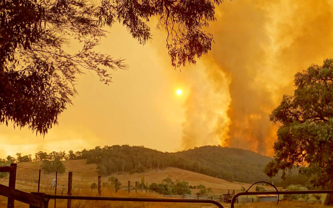 Bushfire prediction tech to bolster emergency response efforts