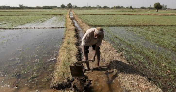 indian-farmers