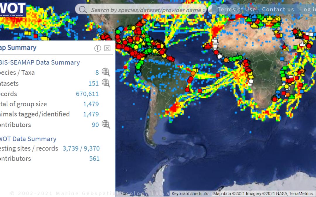 Online Map & Sea Turtle Database